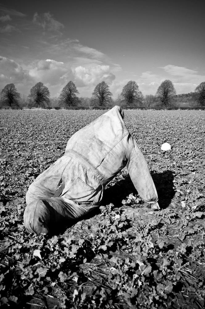 egleton-scarecrow-2-L10039-copy