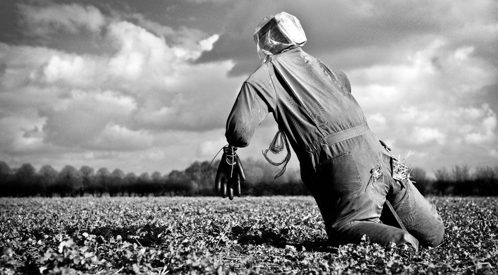 egleton-scarecrow-L1003901-bw