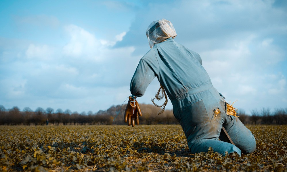 New Scarecrows